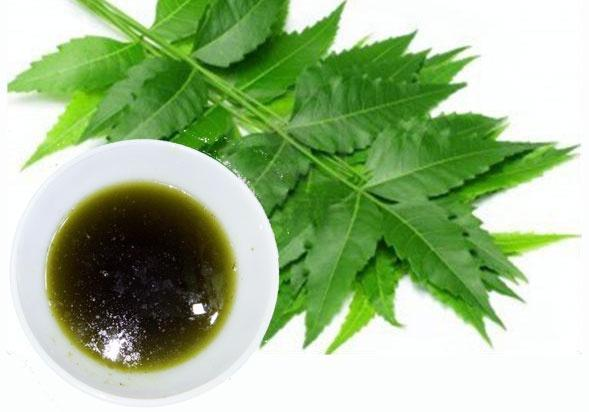 Buy neem oil for plants (nanhapodha) image